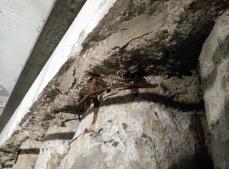 Caso de éxito de Prolisur en impermeabilización de sótanos